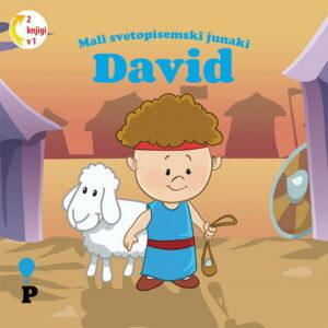 Dobra knjiga - David - Mali svetopisemski junaki - otroške knjige, Podvig